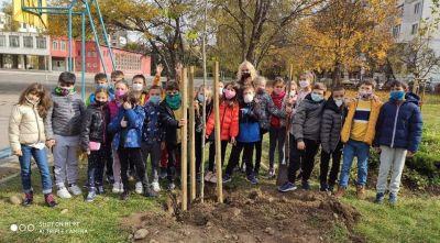 """Учениците от 3б клас с удоволствие засадиха дръвчета в училищния двор - """"Моето зелено училище"""" 1"""