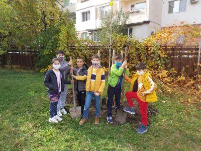 """Учениците от 3б клас с удоволствие засадиха дръвчета в училищния двор - """"Моето зелено училище"""" 2"""