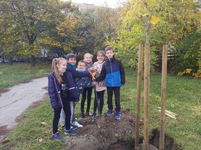 """Учениците от 3б клас с удоволствие засадиха дръвчета в училищния двор - """"Моето зелено училище"""" 3"""