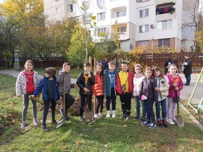 """Учениците от 3б клас с удоволствие засадиха дръвчета в училищния двор - """"Моето зелено училище"""" 4"""