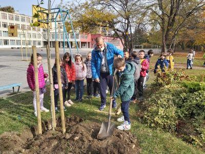 """Учениците от 3б клас с удоволствие засадиха дръвчета в училищния двор - """"Моето зелено училище"""" 6"""